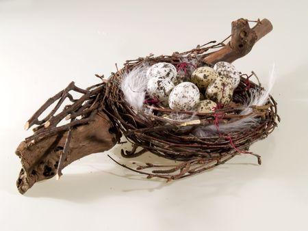 Birch nest with quails  eggs, white background photo