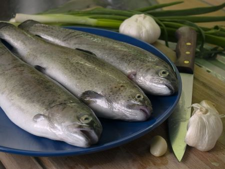 Three fresh trouts on the blue plate, vegetables in the kitchen background photo