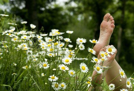 Detail of barefoot at daisies photo