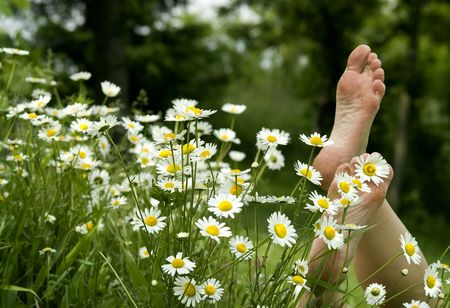 female soles:  Detail of barefoot at daisies Stock Photo