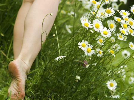 Woman bare foot, walking in meadow, daisies