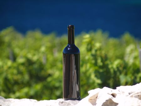 bottle of red wine standing in vineyeard, sea at background