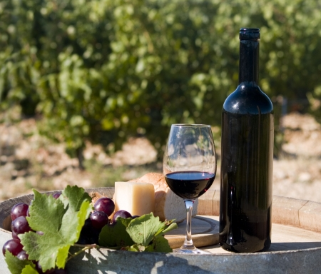 still of glass of red wine and cheese at the vineyard photo