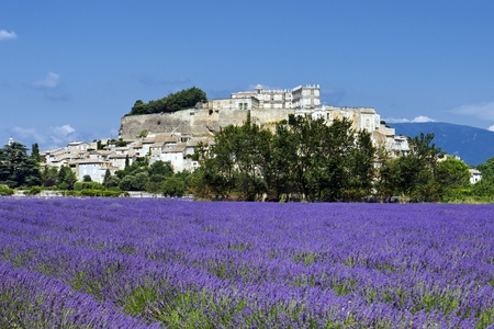 france perfume: Grignan village and lavender field Stock Photo