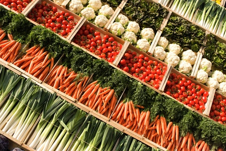 many fresh, different types of vegetables on market photo