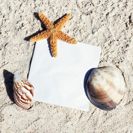 contact sheet: Messages between sands and shells on caribbean beach Stock Photo