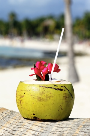 Coconut with drinking straw on a palm tree on a beach photo