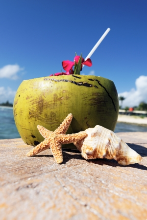 Coconut with drinking straw and sea shells photo