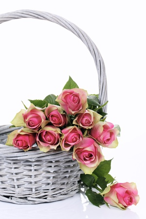 pink roses in Basket on white background photo