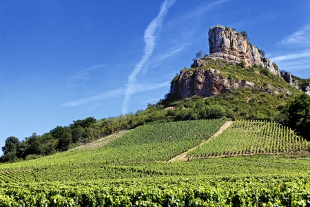 bourgogne: famous Solutre Rock with vineyards, Burgundy, France  Stock Photo