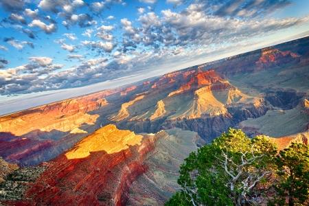 grand canyon national park: view of Grand Canyon at sunrise, USA