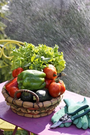 water jet: fresh vegetables on the table in front of water jet