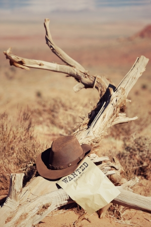 vintage wanted poster and hat on dead wood photo