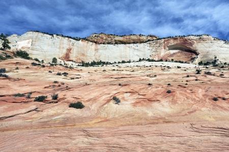 Beautiful slopes of Zion canyon. Utah. USA.  photo