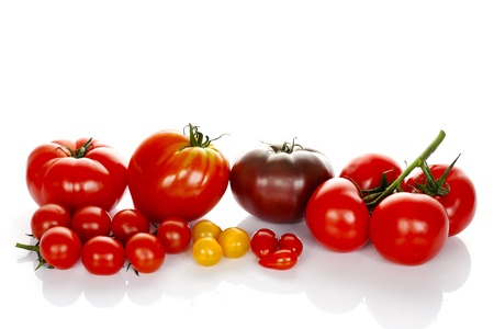 plants species: pomodori con foglie verdi isolati su sfondo bianco