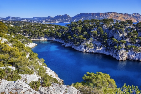 inlet bay: Calanques of Port Pin in Cassis in France near Marseille