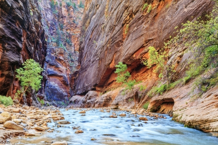 Shallow rapids of the famous Virgin River Narrows in Zion National Park - Utah