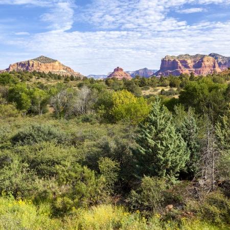 view of red rock landscape, Sedona, Arizona  photo