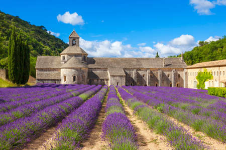 gordes: Abbey of Senanque and blooming rows lavender flowers. Gordes, Luberon, Vaucluse, Provence, France, Europe.