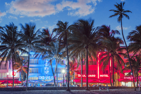 MIAMI, FLORIDA - JANUARY 24, 2014: Palm trees line Ocean Drive. The road is the main thoroughfare through South Beach.  新聞圖片