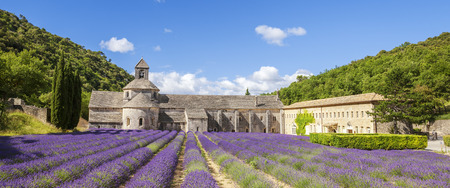 abbaye: Abbey of Senanque and blooming rows lavender flowers. Panoramic view. Stock Photo