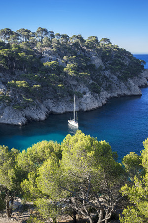 Calanques of Port Pin, vertical view,  Cassis, France photo