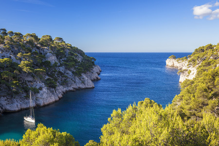 Calanques of Port Pin, Cassis, France photo