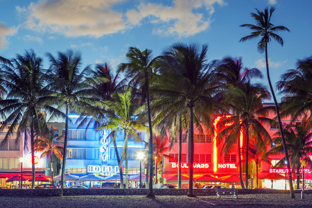 MIAMI, FLORIDA - JANUARY 24, 2014: Palm trees line Ocean Drive. The road is the main thoroughfare through South Beach.