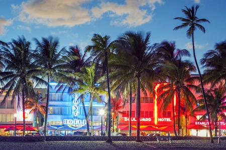MIAMI, FLORIDA - JANUARY 24, 2014: Palm trees line Ocean Drive. The road is the main thoroughfare through South Beach.