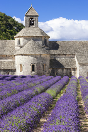 abbey: Famous Abbey of Senanque. France.