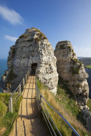 ocas: Vista de la aguja hueca, Etretat, Francia