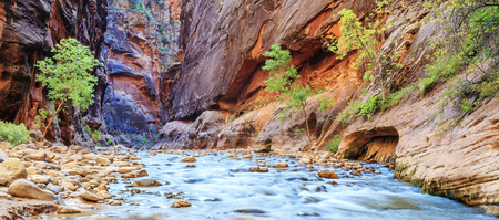 Shallow rapids of the famous Virgin River Narrows in Zion National Park - Utah Stock Photo