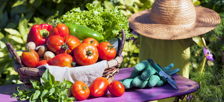 sell: Some vegetables in a basket under the sunlight