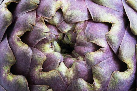View of artichoke, closeup