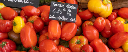 some tomatoes in market, France