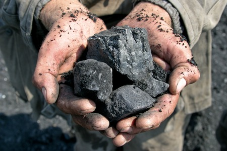 Working Environment: coal miner in the hands of coal background