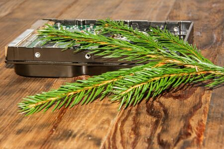 A festive composition. Computer hard drive with green branch Christmas tree. New Year and Christmas concept.