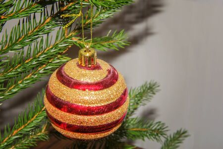 Christmas background - Red Christmas ball on branch of spruce tree. Happy New Year decoration. Banco de Imagens