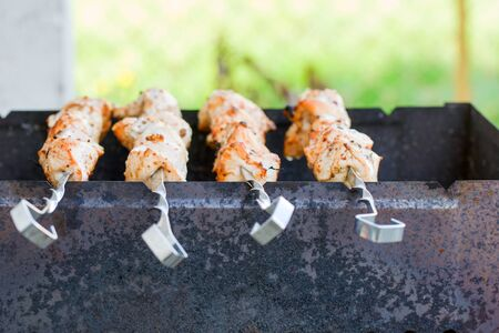 Shish kebab is fried on the grill. Summer picnic in nature. Family weekend in the country
