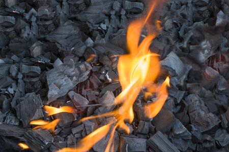 Fire on the black wood coals. Preparation of fire for shish kebab