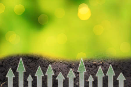 Fertile loam soil suitable for planting with green bokeh. Gardening or planting concept. Arrows show growth and development.