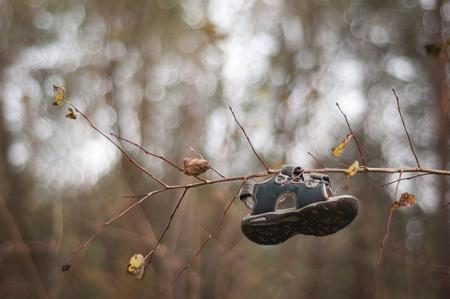 somebody: Somebody lost a shoe Stock Photo