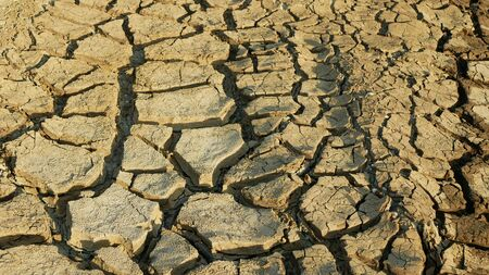 Drought cracked pond wetland, swamp drying up soil crust earth climate change, surface extreme heat wave caused crisis, environmental disaster earth cracks very, death dry degradation marsh Standard-Bild