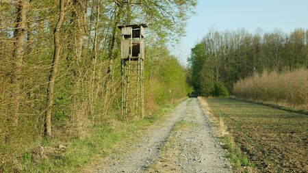 Hunting lookout tower of wood near the forest and field. Hunt tradition hide deer and deer hunting, also hares and pheasant rabbits wooden watch. Beautiful green colors of trees and shrubs bush landscape, broken old shed. scenic wildlife Moravia cabin, Czech Republic, Europe, European Union