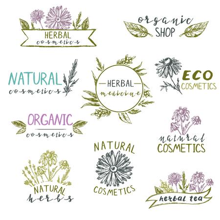Satz von Logo-Vorlagen mit Hand gezeichneten Pflanzen und Blumen. Naturkosmetik, Kräuter, Bio, eco.