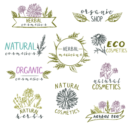 Set of logo templates  with hand drawn plants and flowers. Natural cosmetics, herbs, organic, eco.