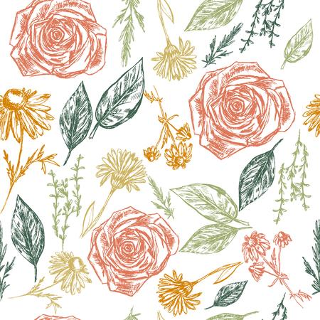calendula: Seamless pattern with hand drawn botanic elements Illustration