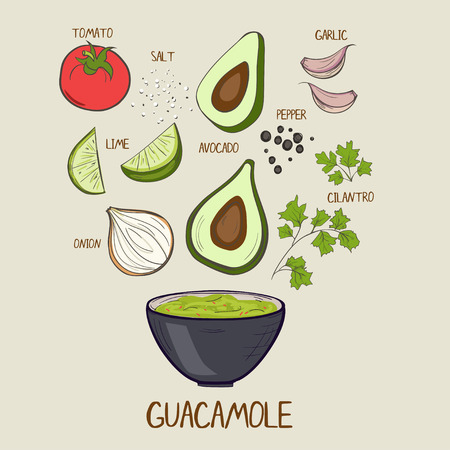 Illustrated guacamole sauce recipe with filling ingredients