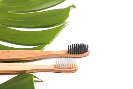 Bamboo brushes lying on green monstera leaf , close-up. Stock Photo