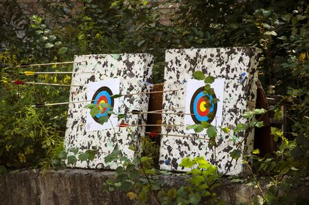 2 boards with targets for archery next to green bushes